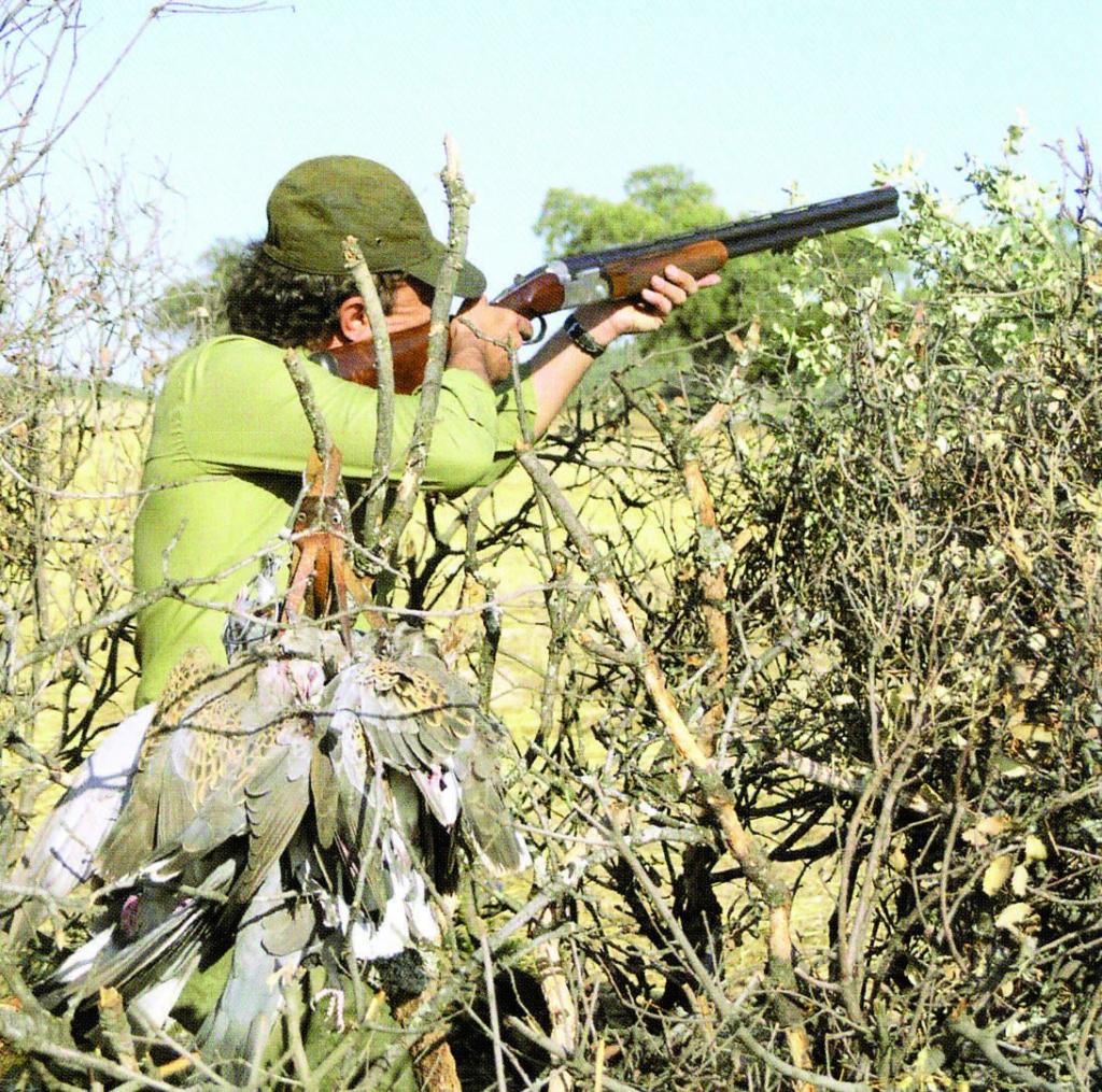 Coto de caza El Deheson Caza