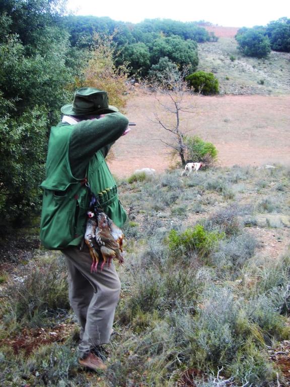 Coto de caza  Cruz del Viso Caza
