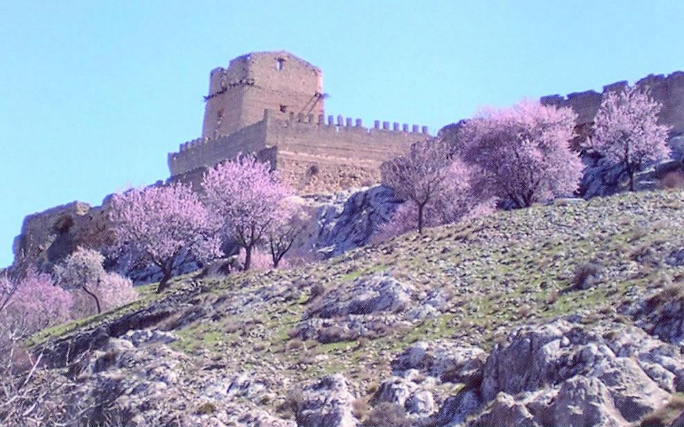 Castillo de Taibilla Pedro-Andres Nerpio  Nerpio