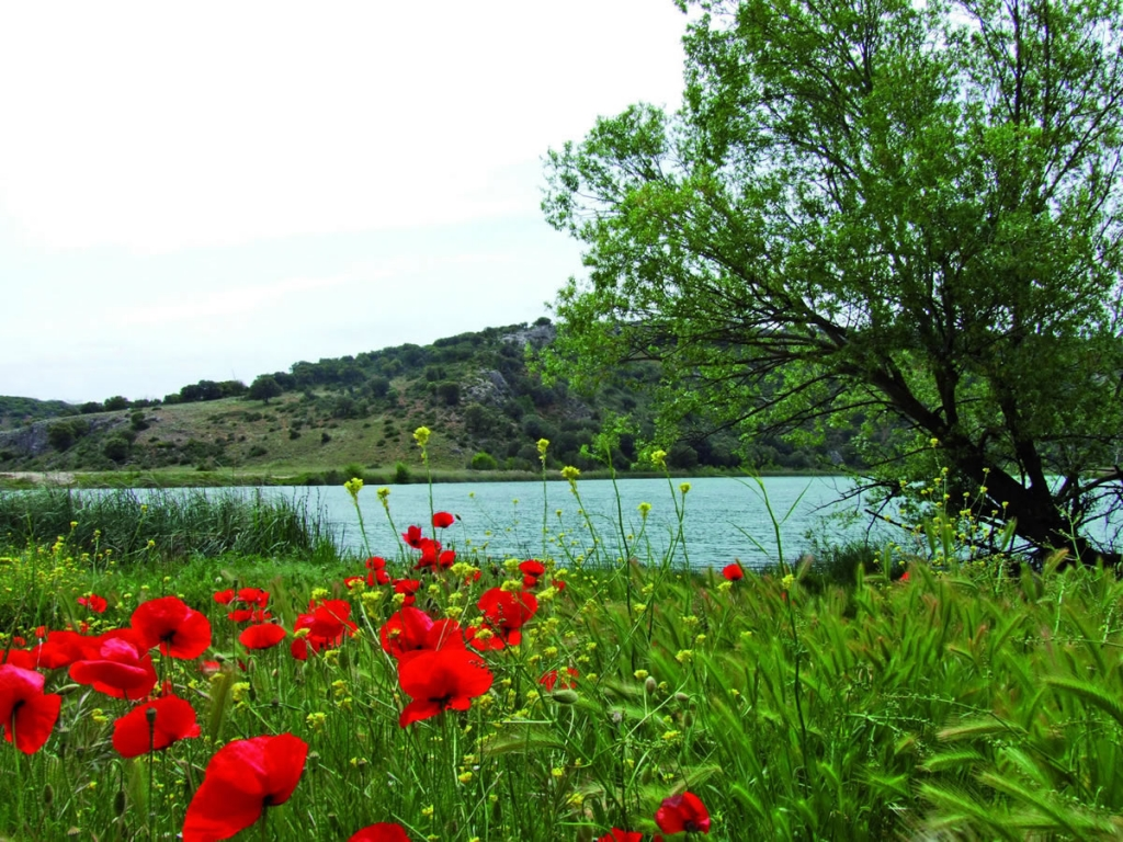 Alcaraz Laguna del Arquillo