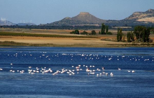 Pétrola lagoons