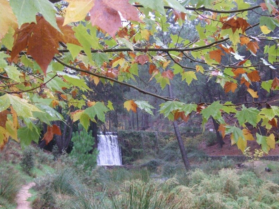 Autumn tourism in Albacete 2012