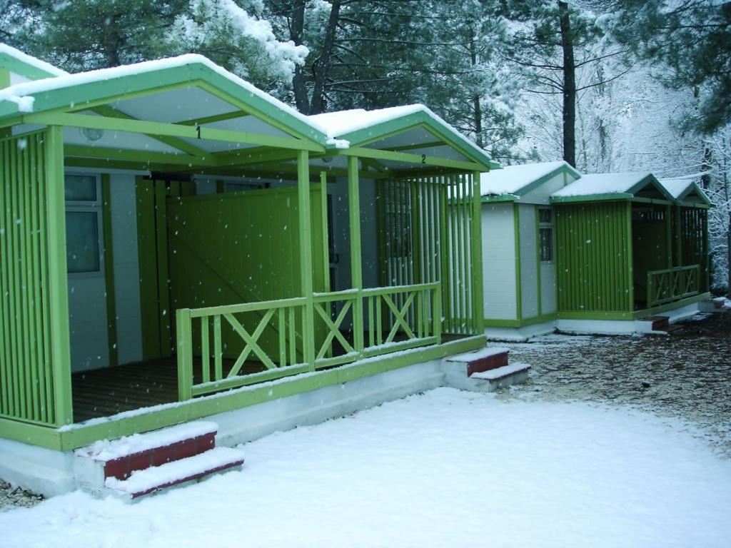 Campings y Albergues