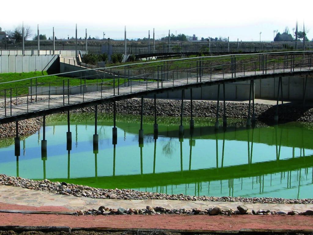 Nuevo Horario de Verano  en el Jardin Botánico de Castilla La Mancha