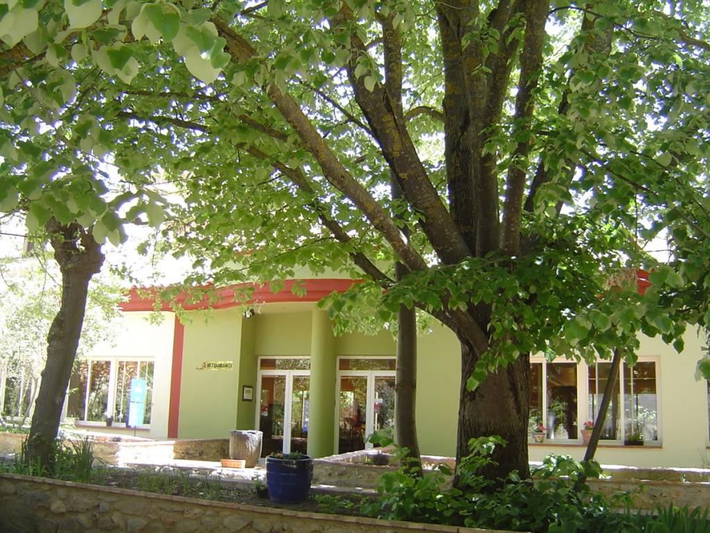 Restaurante Puerta del Arco Restaurante Puerta del Arco
